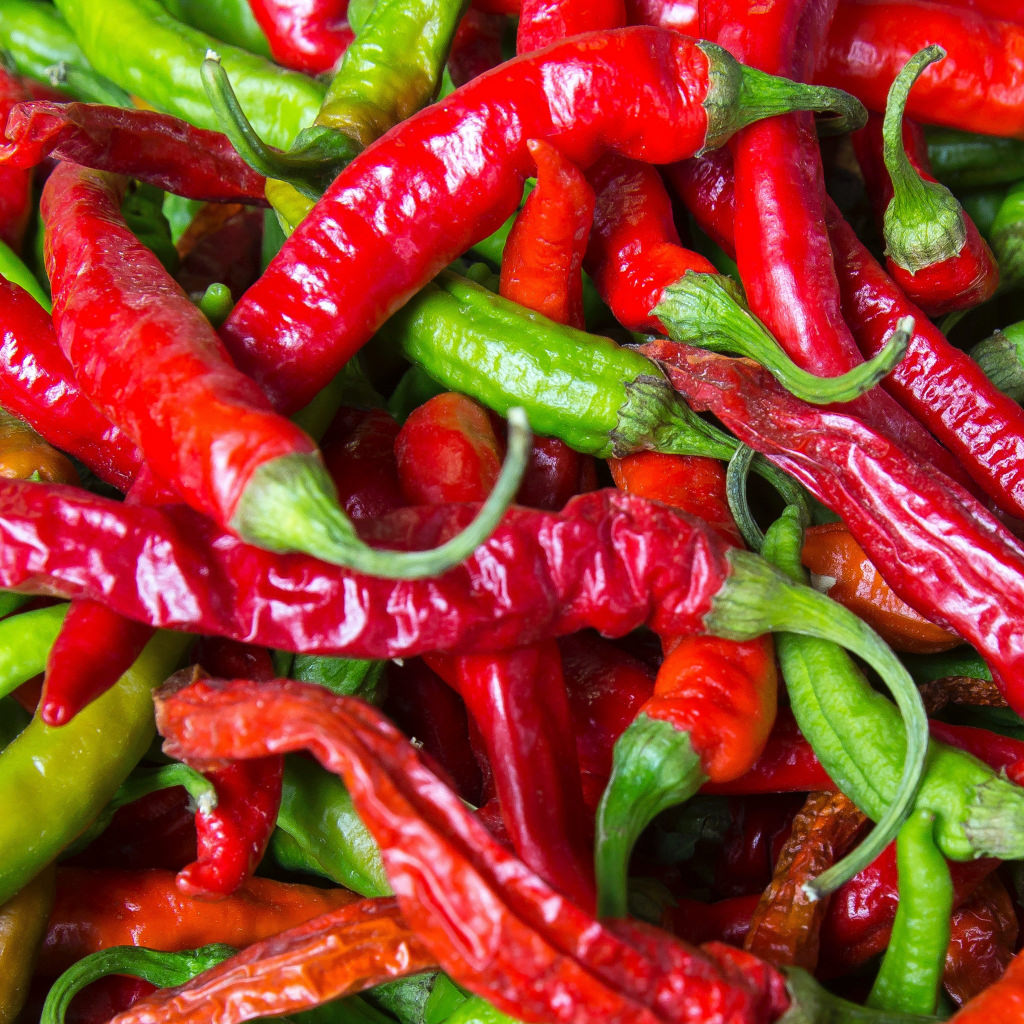 A generous pile of red and green chili peppers